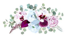 Orquídea manchada exótica, Anthurium, rosa púrpura, anémona, eucalyp stock de ilustración