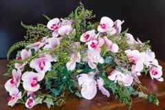 A orquídea maravilhosa floresce a composição foto de stock royalty free