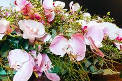A orquídea maravilhosa floresce a composição fotografia de stock