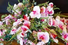A orquídea maravilhosa floresce a composição foto de stock