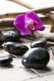 Orquídea rosada con los guijarros del zen para el tratamiento del balneario Foto de archivo libre de regalías