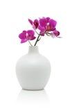 Orquídea rosada en el florero blanco Foto de archivo