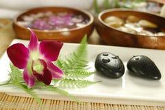 Orquídea roxa nos termas Fotos de Stock
