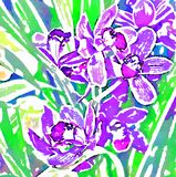 Orquídea Stylization de la acuarela imagen digital libre illustration