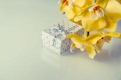 Orquídeas amarelas Imagem de Stock Royalty Free