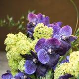 Orquídeas azules y rosas de guelder Imagen de archivo libre de regalías