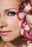 Orquídeas cor-de-rosa imagens de stock