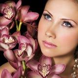 Orquídeas cor-de-rosa fotos de stock