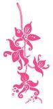 Orquídeas del vector Imagenes de archivo