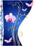 Orquídeas e borboletas ilustração royalty free
