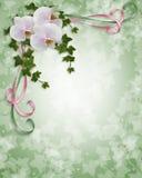 Orquídeas e invitación de la boda de la hiedra Fotos de archivo