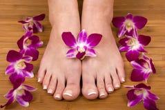 Orquídeas e pés imagens de stock