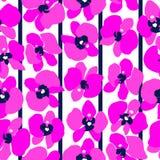 Orquídeas magentas inconsútiles Fotos de archivo libres de regalías
