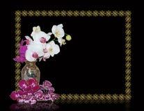 Orquídeas no vaso oriental no preto Foto de Stock Royalty Free