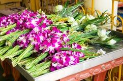 Orquídeas púrpuras. Imagen de archivo