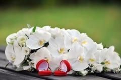 Orquídeas y anillos de bodas Imagen de archivo