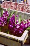 Orquídeas y palillos budistas del incienso Fotos de archivo