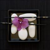 Orquídea y guijarro blanco Imagen de archivo libre de regalías