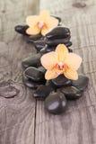 Orquídeas amarillas del Phalaenopsis y piedras negras Fotos de archivo libres de regalías