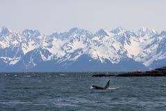 Orque et montagnes, IV Image libre de droits