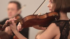Orquesta de cámara Una mujer joven que toca el violín durante un funcionamiento Ángulo lateral almacen de video