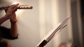 Orquesta de cámara Una mujer joven que toca la flauta por las notas almacen de metraje de vídeo