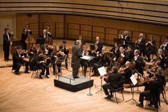 Orquestra filarmónica de Eterna do Anima Foto de Stock Royalty Free