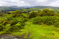 Orrest Head. Near Lake Windermere, Lake District UK Stock Photo