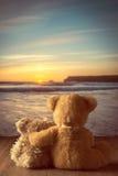Orsacchiotti al tramonto Fotografia Stock