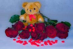 Orsacchiotto circondato dalle rose rosse e dai cuori della caramella per il giorno del ` s del biglietto di S. Valentino fotografia stock libera da diritti
