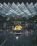 Orsacchiotto gigante Fotografia Stock