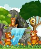 Orsi che si rilassano dalla cascata royalty illustrazione gratis