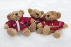 Orsi dell'orsacchiotto nella neve Fotografia Stock