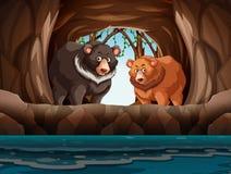 Orsi grigii che vivono nella caverna illustrazione vettoriale