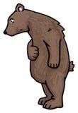 Orso Illustrazione di Stock