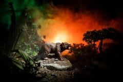 Orso arrabbiato dietro il cielo nuvoloso del fuoco La siluetta di un orso nel fondo nebbioso di buio della foresta Fotografia Stock