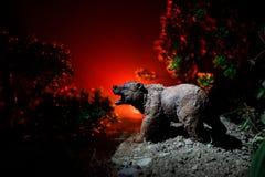 Orso arrabbiato dietro il cielo nuvoloso del fuoco La siluetta di un orso nel fondo nebbioso di buio della foresta Fotografie Stock Libere da Diritti