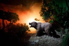 Orso arrabbiato dietro il cielo nuvoloso del fuoco La siluetta di un orso nel fondo nebbioso di buio della foresta Immagini Stock