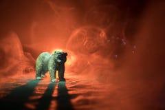Orso arrabbiato dietro il cielo nuvoloso del fuoco La siluetta di un orso nel fondo nebbioso di buio della foresta Fuoco selettiv Fotografie Stock