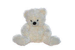 Orso bianco dell'orsacchiotto Immagine Stock