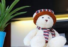 Orso bianco della bambola Fotografia Stock