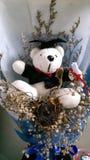 Orso bianco di Gradution con i fiori fotografia stock libera da diritti
