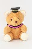 Orso bruno che indossa un cappuccio di graduazione Fotografie Stock Libere da Diritti