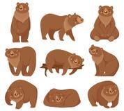 Orso bruno del fumetto Orsi grigii, animali predatori della foresta selvaggia della natura ed illustrazione di seduta di vettore  royalty illustrazione gratis
