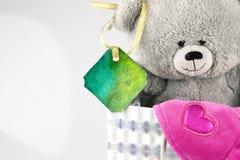 Orso con la borsa Fotografie Stock