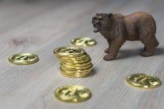 Orso con oro Bitcoin Cryptocurrency Concetto finanziario di Wall Street del mercato di orso immagine stock
