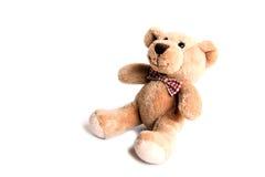 Orso del giocattolo Fotografia Stock