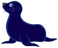 Orso del mare Immagine Stock
