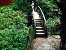 Orso del ponte dei diavoli entrambe il Galles Fotografia Stock Libera da Diritti