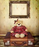 Orso dell'orsacchiotto Immagine Stock Libera da Diritti